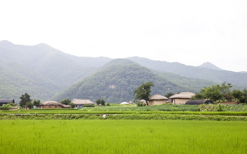 South Korea countryside