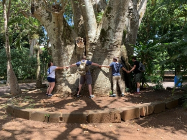 UA Student Joseph studied abroad in Mauritius. Students holding hands around a tree