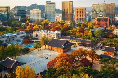 Seoul Autumn Colors